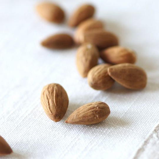 almonds-blog-pic